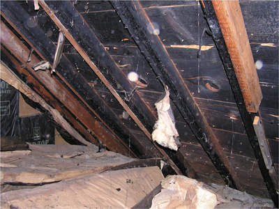 Burnt rafters and roof deck of this attic