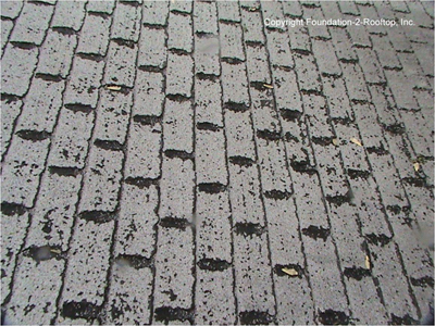 Organic backed asphalt composite 3-tab roof is only 8 years old