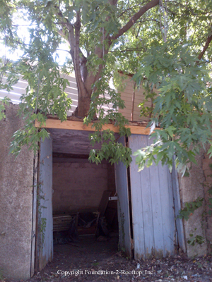 Good-sized tree growing on top of a detached garage roof causing the concrete ceiling to crack and sag.  Inside there's a small steel beam ill supported trying to hold it up